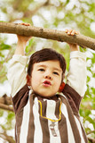 Closeup portrait of little boy who hang on branch grasping poster