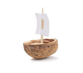 Walnut Shell Boat