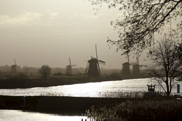 Kinderdijk early morning