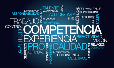 Competencia experiencia calidad nube de etiquetas