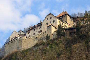 Castle Prince of Liechtenstein