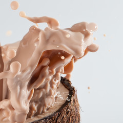 Coconut splash on isolated background