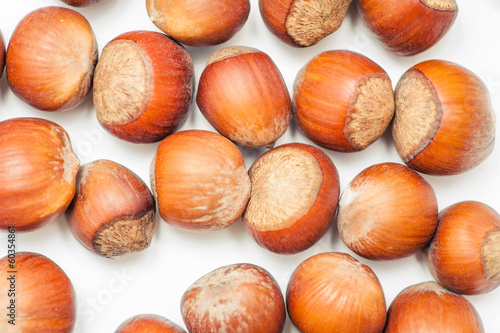 hazelnut filbert isolated on white background