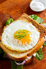 Fried egg on toast with green leaves