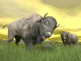 Bisons in nature - 3D render