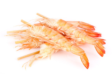 Shrimps on white background