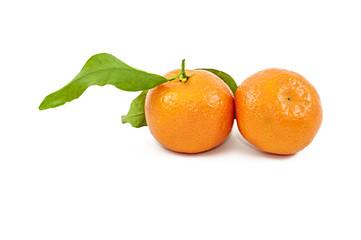 Coppia di Mandarini