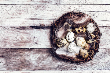 Easter basket with Easter Eggs on wooden background. Quail easte