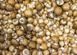 Brown champignons for sale