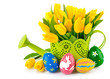 easter eggs with yellow tulips in watering can isolated on