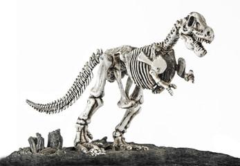 T.rex skeleton