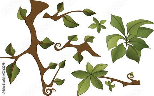 Set of branches and leaves