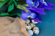 quail eggs and irise flowers