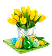 easter eggs with yellow tulips in bucket isolated on white