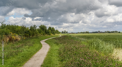 Bicycle path through dutch landscape