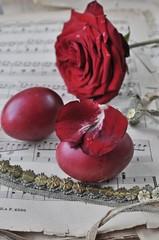 Rose und Ostereier