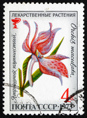 Postage stamp Russia 1973 Moorland Spotted Orchid