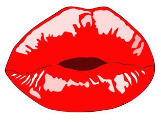 Le labbra carnose di una bella bocca femminile