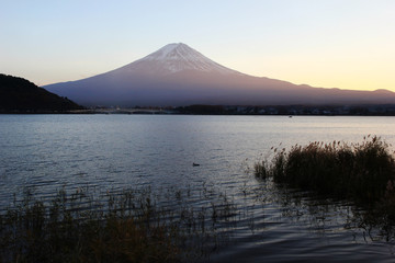 Lake Kawaguchi and Mount Fuji