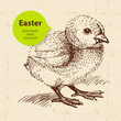 Vintage Easter background with hand drawn sketch illustration an