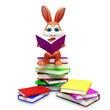 bunny sitting on pile of books
