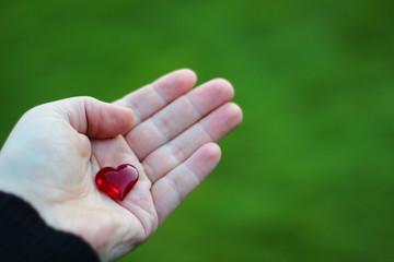 Herz in der Hand vor Wiese