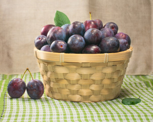 Fresh plums in a basket. The harvest season.