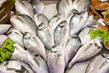 Fresh sea bass at market stall