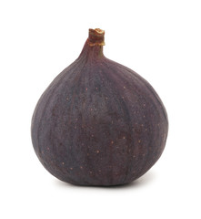 One ripe fig (isolated)