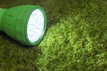 苔の上のLEDライト