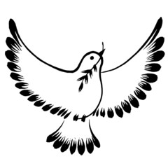 silhouette of a flying dove peace