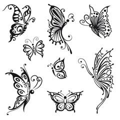 Schmetterlinge, Insekten, Sommer