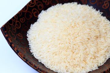 Oryza sativa thailand rice