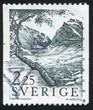 Alpine birch