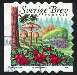 Mushrooms and lingonberries