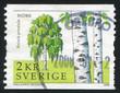 Sweden Birch
