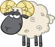 Cute Black Head Ram Sheep Cartoon Mascot Character