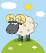 Cute Black Head Ram Sheep Cartoon Mascot Character On A Hill