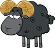 Cute Black Ram Sheep Cartoon Mascot Character