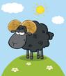 Cute Black Ram Sheep Cartoon Mascot Character On A Hill