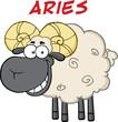 Smiling Black Head Ram Sheep Under Text Aries