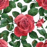 Seamless background with roses. Watercolor painting