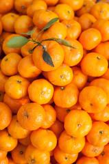 Tangerines oranges