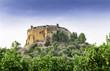Montesa Castle, near Ontinyent, Valencia Province, Spain