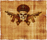Army General Skull Parchment