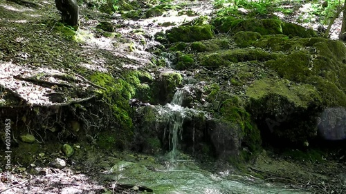 Creek in Crimea mountains