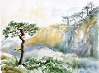 Rocks and pine tree