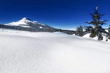 Neve sulle Alpi