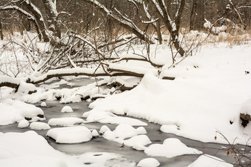 Winter Snow Covered Stream