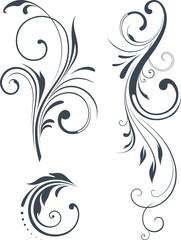 vector_scroll_design